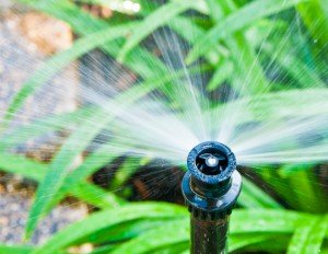 Irrigation Supplies, Installations & Maintenance